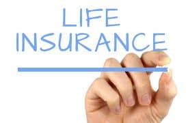 Will Life Insurance Cover My Dog?