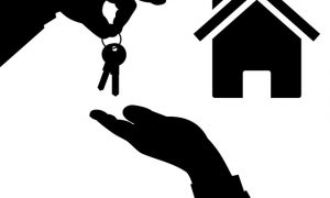 An understanding of Real Estate in Tampa, Florida